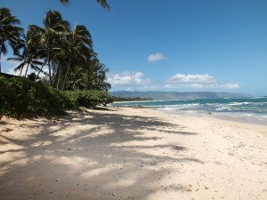 North Shore Beaches